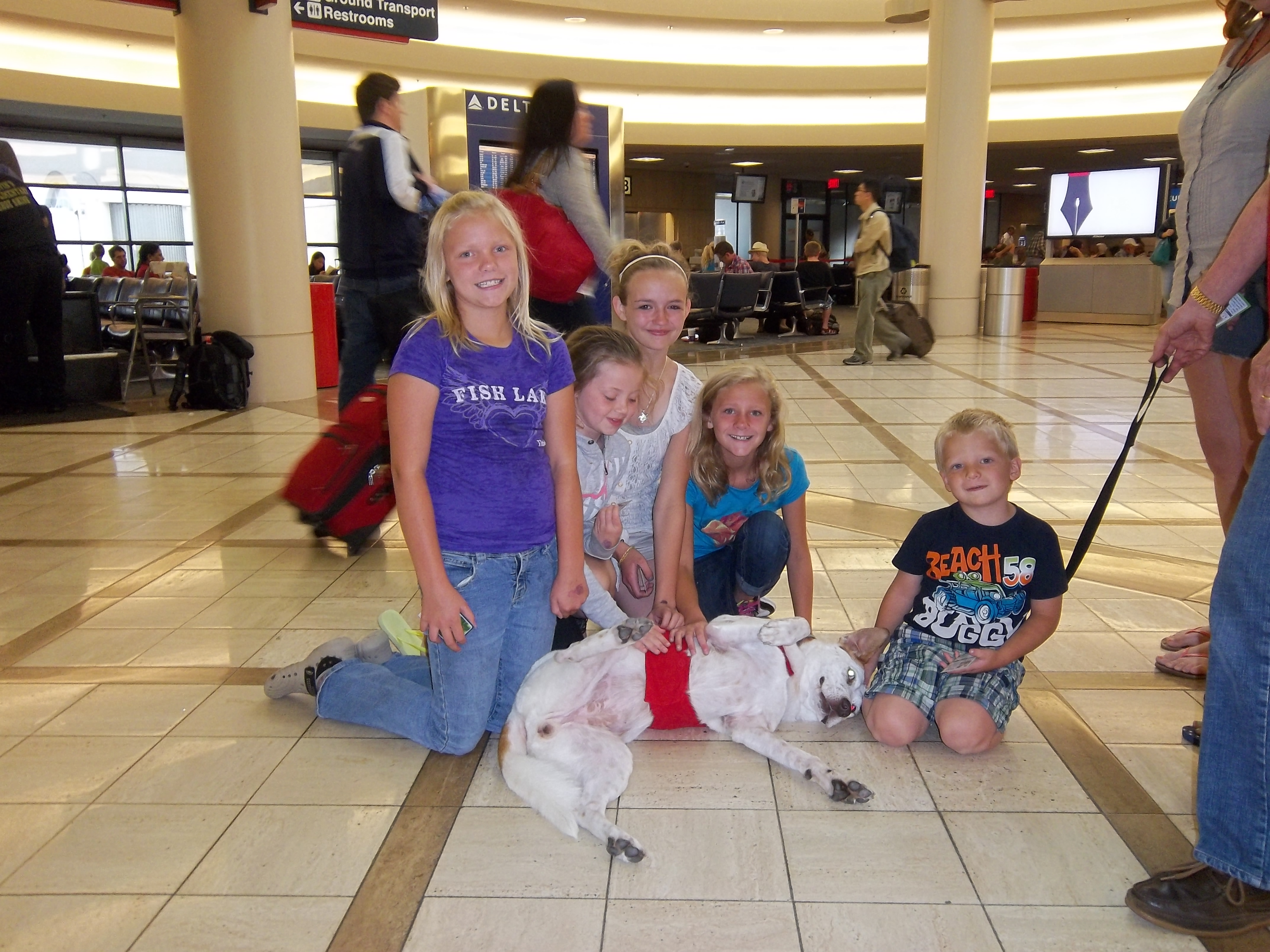 Young travelers enjoy spending time with the therapy dogs