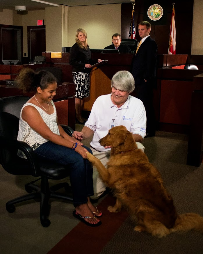 A young girl receives comfort from a therapy dog while in the courtroom