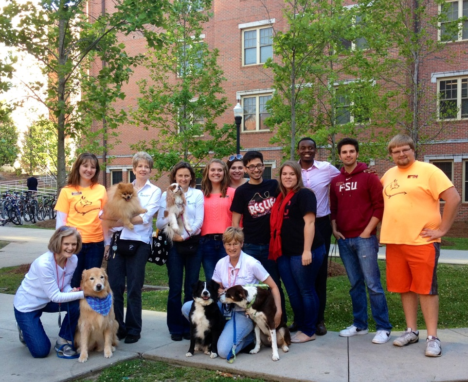 Therapy dog teams interacting with Florida State University students
