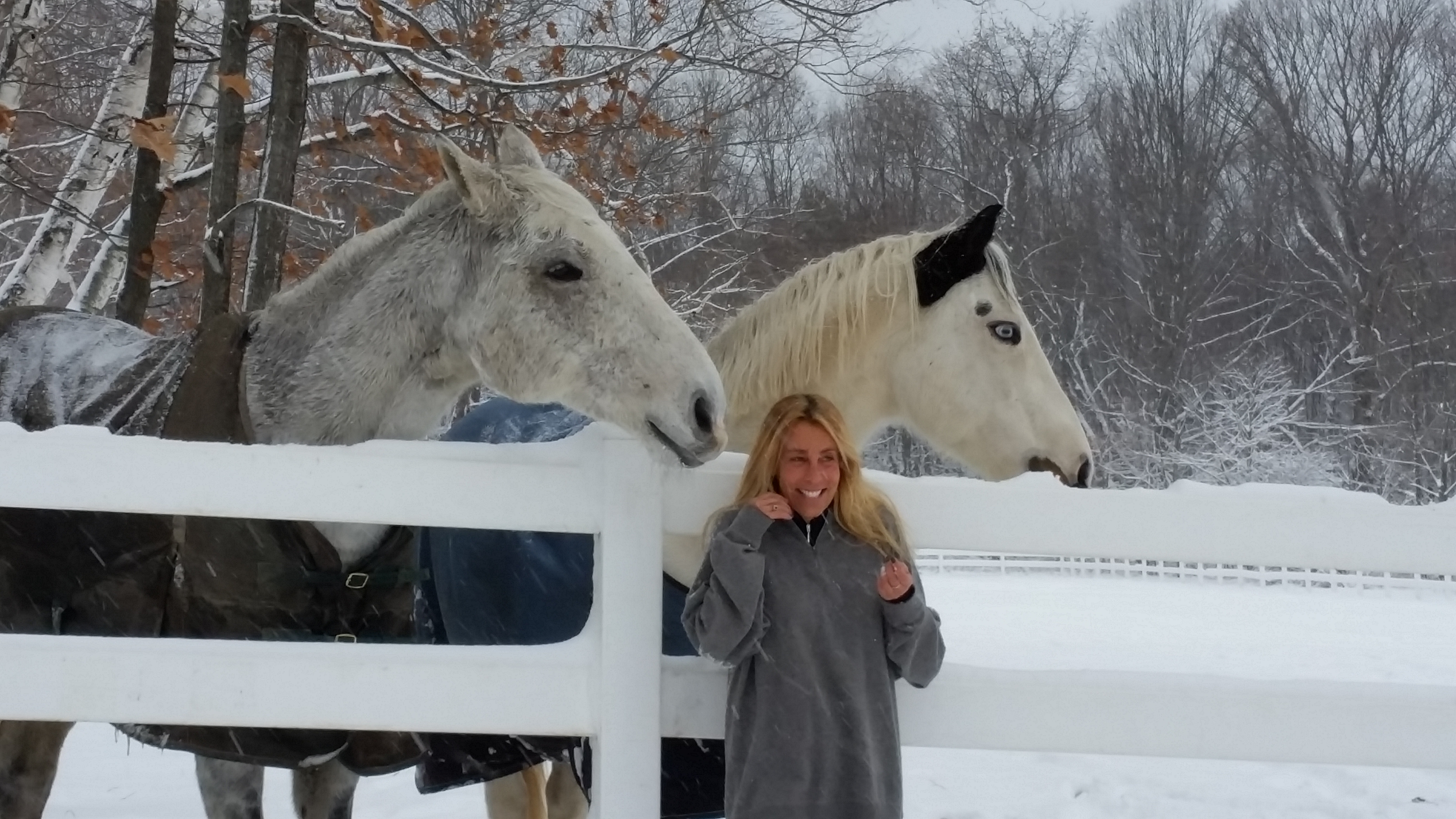 Berkshire HorseWorks' Founder and Executive Director Hayley Sumner