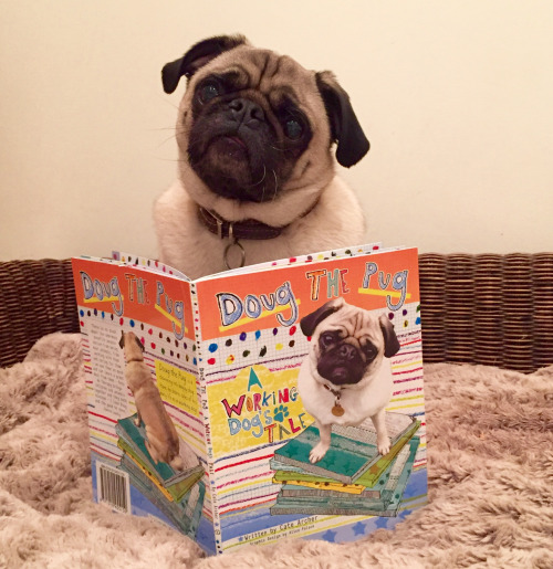 "Doug Reads ""Doug the Pug-A Working Dog's Tale"""