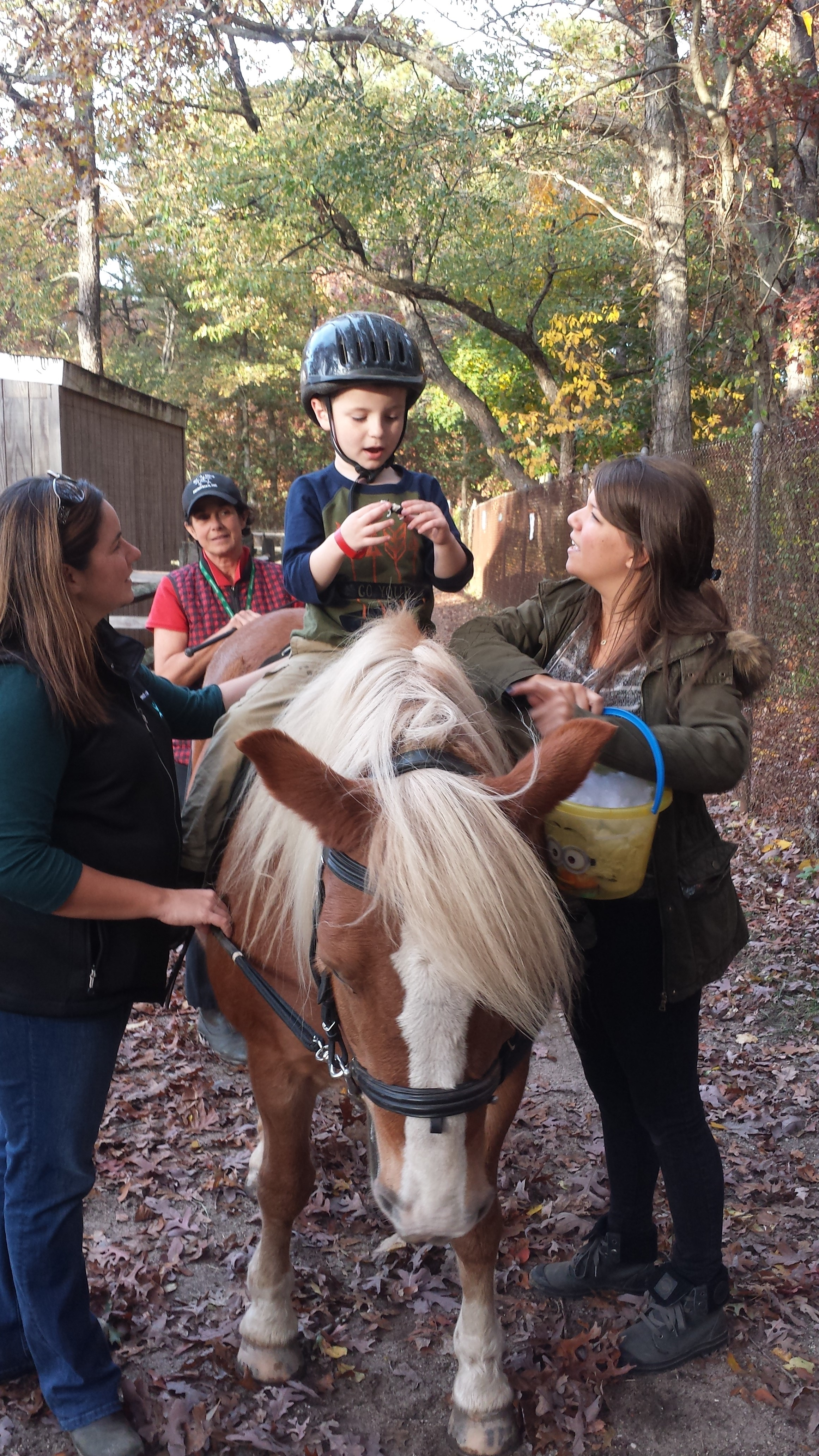 Rocco and her assistants interact with a client who is horseback during a therapy session