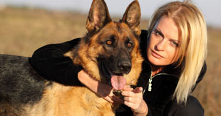 The protective and loving nature of German Shepherds makes them ideal guardians