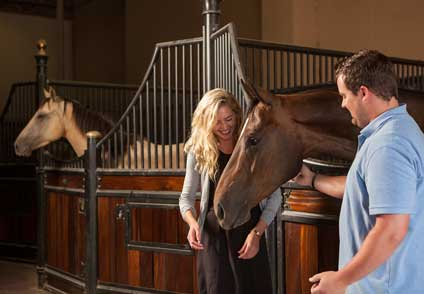 Cirque Lodge residents have the opportunity to work with horses as an experiential therapy.
